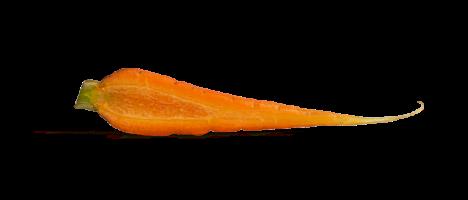 p&co_carotte